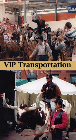 VIP West Transportation